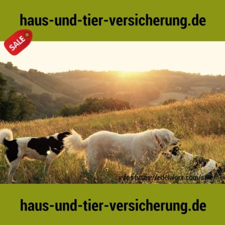 haus-und-tier-versicherung.de