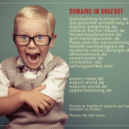 Domain Portfolio Verkauf auF SEDO.COM